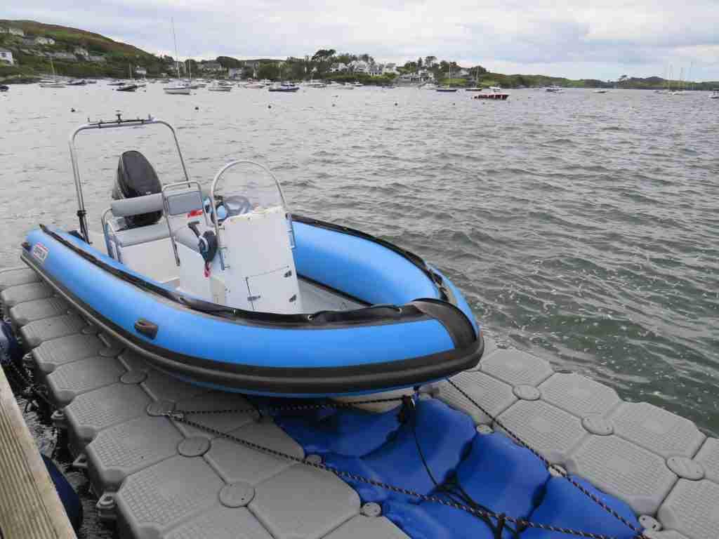Blue RIB for sale
